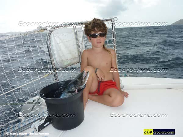 Attenti a quel pesce!!